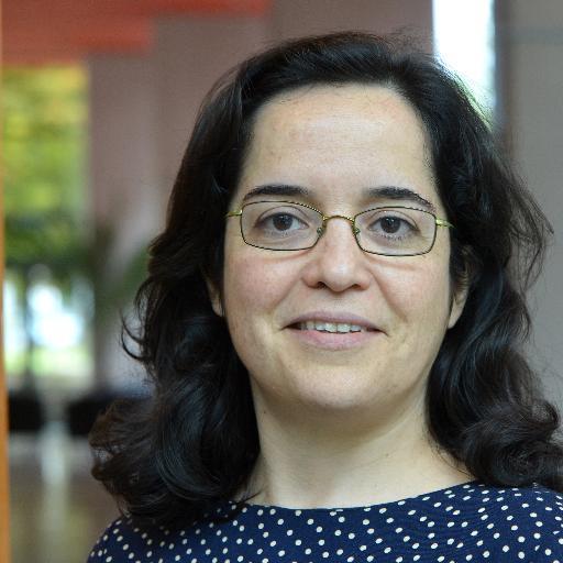 Prof. Ana POMBO